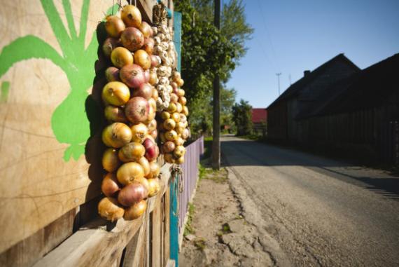onion-road